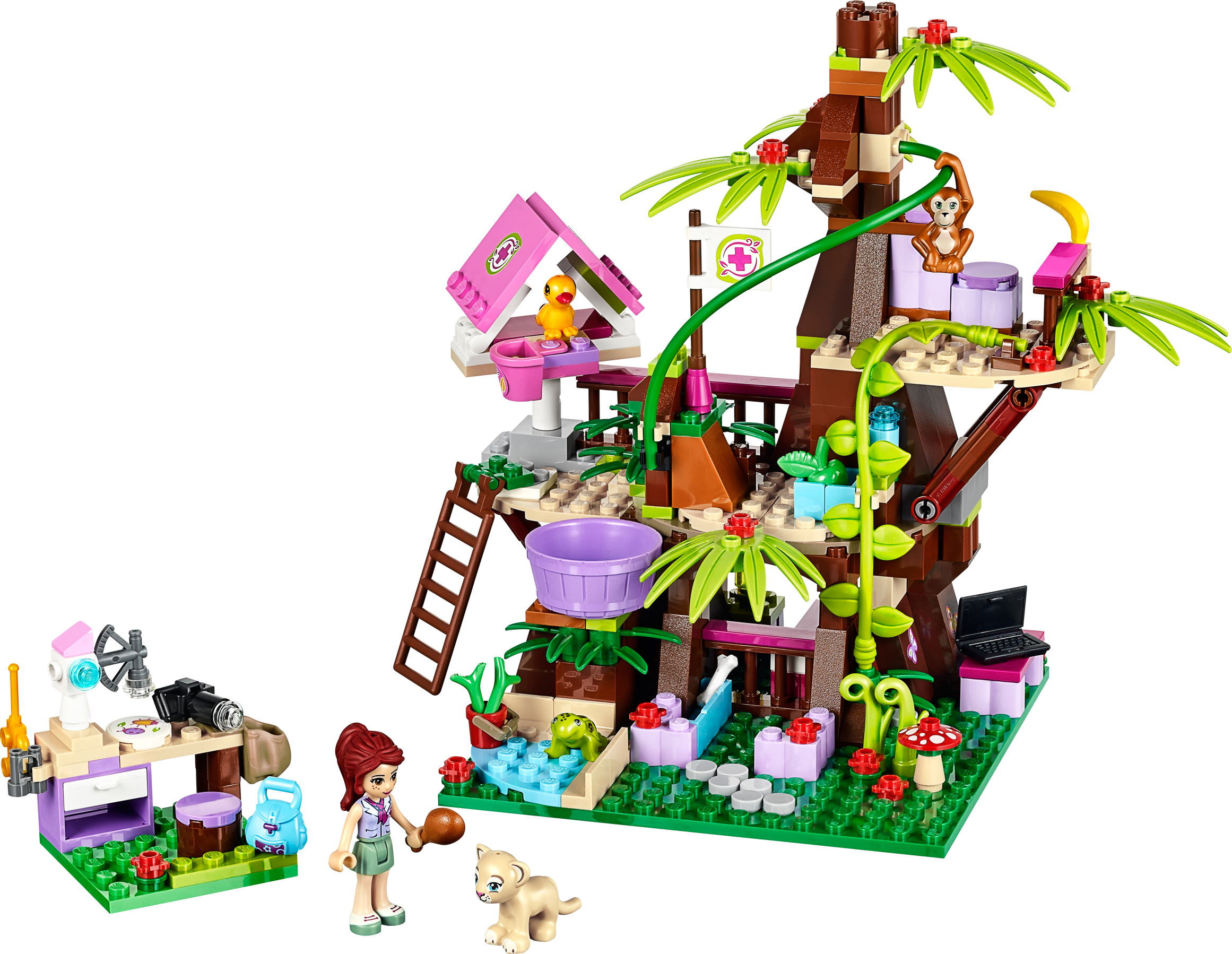 Jungle Tree Sanctuary